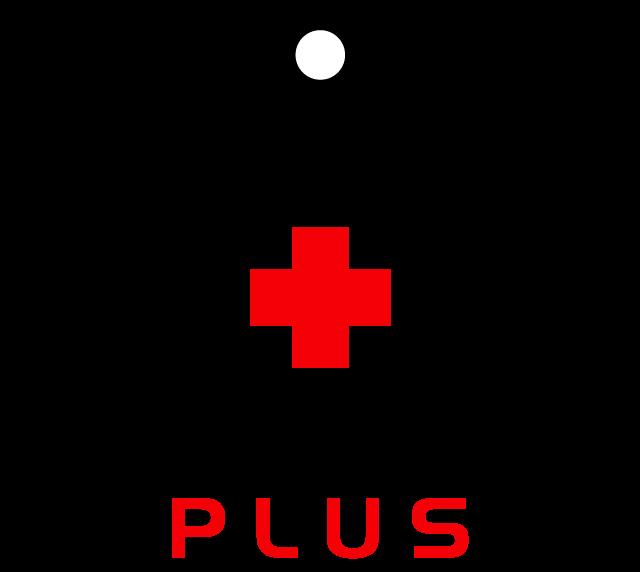 Rigging Plus Ltd